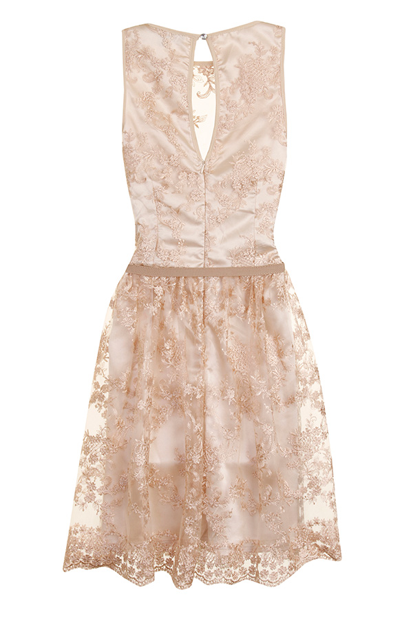 Little Mistress Luxe Lace Dress