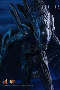 Alien Warrior Figure 1:6