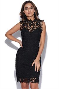 Lace Overlay Collar Dress