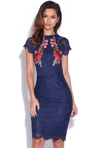Lace Embroidered Bodycon Dress